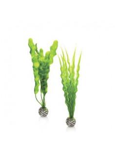 Biorb set de plantes vertes moyennes Oase