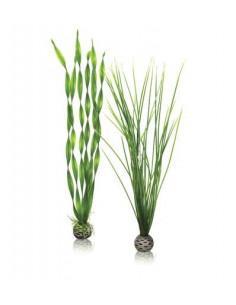 Biorb set de grandes plantes vertes Oase