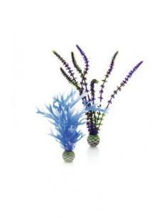 Biorb set de plantes moyennes bleues et violettes Oase