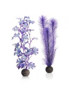 Biorb set de plantes moyennes violettes Oase
