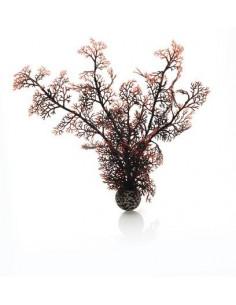 Biorb Corail moyen couleurs d'automne Oase