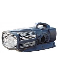 Pompe Aquamax Eco Expert 21000