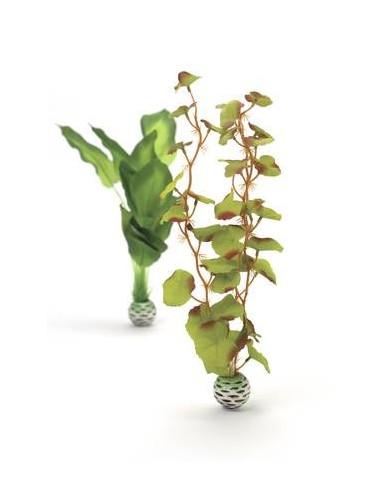 BiOrb Set plantes moyennes soyeuses vertes Oase