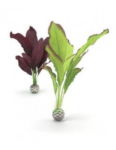 Biorb Set plantes moyennes soyeuses vertes et violettes Oase