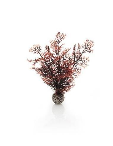 Biorb petit corail couleurs d'automne Oase