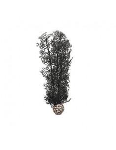 Biorb corail moyen noir Oase