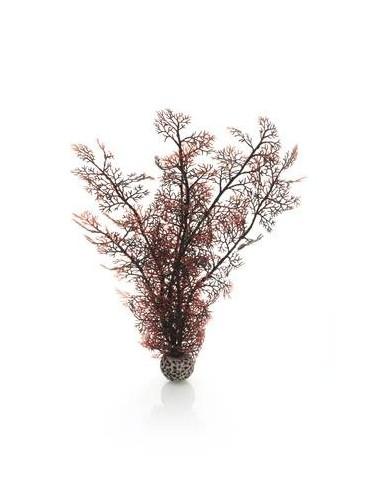 Biorb grand corail couleurs d'automne Oase