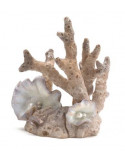 Biorb corail décor moyen Oase
