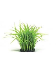 Biorb petit anneau d'herbes Oase