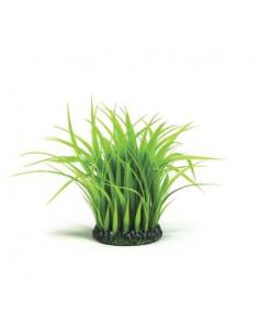 Biorb anneau moyen d'herbes Oase