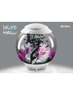 Biorb recette pour composition Halo 60