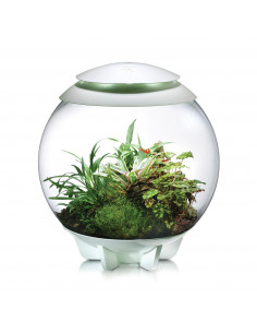 Biorb Air 60 Terrarium blanc