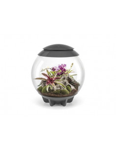 Biorb Air 60 Terrarium gris