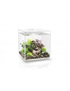 Aquarium biOrb Cube 30 MCR  blanc