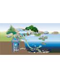 Shéma filtre associé à une pompe pour filtre et ruisseau